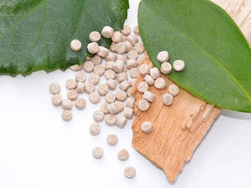Granulat aus Biokunststoffe, dekorativ auf frischen Blättern präsentiert / Compoundier-System